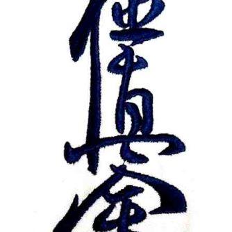 Ichigeki Karate Kokyushinkai