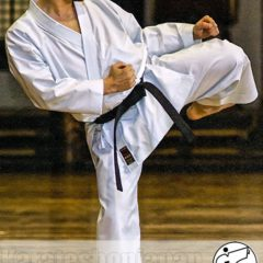 "Karategi Tokaido NST ""Hayate"" JKA taille 5.5 (175cm)"