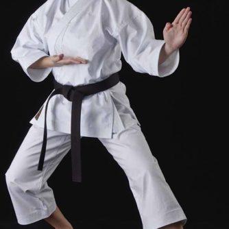 Karategi-Tokaido-SSA-OTAWA