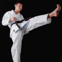 """Karategi Tokaido NST """"Hayate"""""""