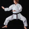 Karategi Tokaido SSA