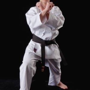 Karategi Tokaido TKD Shoshin (Débutant)