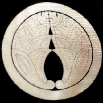 Dakimyoga Montsuki